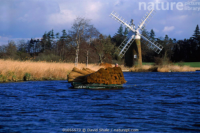 Transporting reeds by boat How Hill Norfolk UK  ,  HARVESTING,SHALE,TRADITIONAL,EUROPE,TRANSPORTING,UK,BOATS,BROADS,DS,PEOPLE,HORIZONTAL,WINDMILL,CROPS,DAVID,LANDSCAPES,REEDS,UNITED KINGDOM,BRITISH,ENGLAND, United Kingdom, United Kingdom, United Kingdom, United Kingdom  ,  David Shale