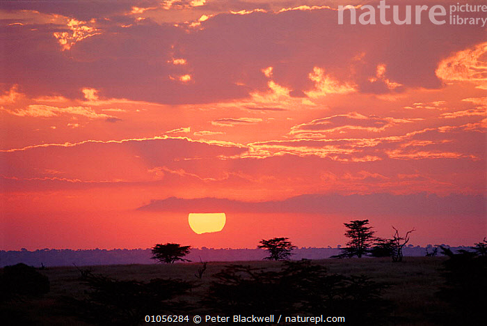 Sunset in Kenya, East Africa.  ,  LANDSCAPES,HORIZONTAL,PETER,BLACKWELL,EAST AFRICA,CLOUDS,PBL,AFRICA,SUNSET,SUN,KENYA,WEATHER  ,  Peter Blackwell