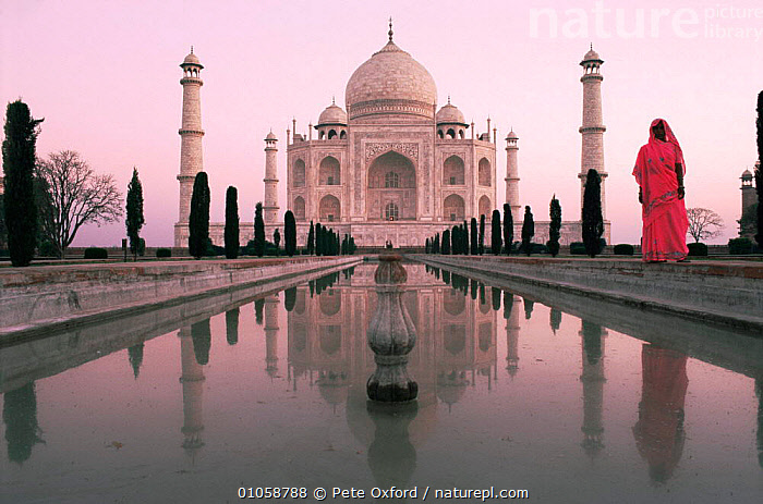 Famous landmark, the Taj Mahal with Indian woman in traditional sari, at sunrise, Agra, Uttar Pradesh, India, ASIA,ATMOSPHERIC,BUILDINGS,DAWN,female,landmark,PEOPLE,REFLECTIONS,temples,TOURISM,women,INDIAN-SUBCONTINENT, Pete Oxford