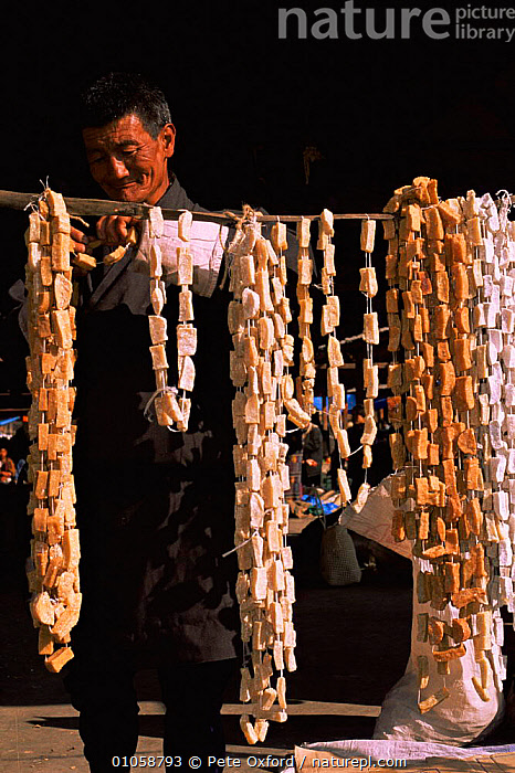 Yak's cheese for sale at market, Thimpu, Bhutan.2001, ASIA,INDIAN SUBCONTINENT,PEOPLE,TRADE,VERTICAL,INDIAN-SUBCONTINENT, Pete Oxford
