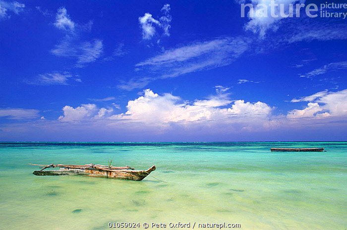 Outrigger fishing canoes off coast of Zanzibar, Tanzania, East Africa, CANOES,BOATS,OUTRIGGER,BEACHES,FISHING,COASTS,ZANZIBAR,HORIZONTAL,AFRICA,EAST-AFRICA,OPEN-BOATS, BOATS, BOATS, BOATS, BOATS, BOATS, Pete Oxford