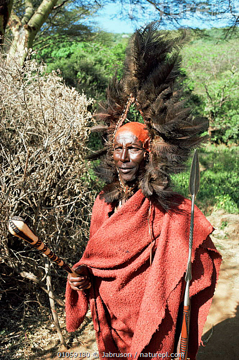 Maasai warrior with headdress, Kenya, East Africa, AFRICA,EAST AFRICA,FEATHERS,MALES,PEOPLE,PORTRAITS,TRADITIONAL,TRIBES,EAST-AFRICA , Bruce Davidson, Jabruson