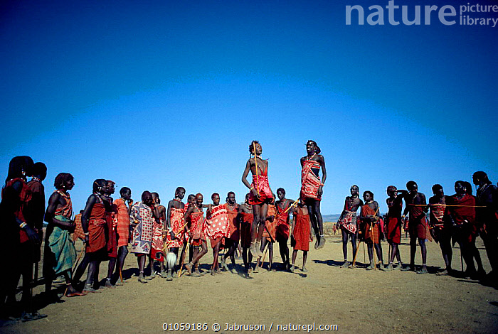 Maasai boys jumping during ceremony, Alamal Lengipaata. Rift Valley, Kenya, East Africa 1985, ACTION,AFRICA,AFRICAN,BDA,BOYS,CEREMONIES,CHILDREN,CULTURES,DANCE,DANCING,EAST AFRICA,HORIZONTAL,JUVENILE,LEAPING,MAASAI,MAKE UP,MALES,MASAI,PAINT,PEOPLE,RITE,RITUAL,TRADITIONAL,TRIBE,TRIBES,EAST-AFRICA , Bruce Davidson, Jabruson