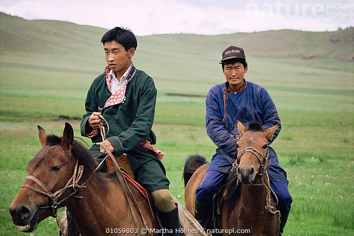 Mongolian riders on steppe, Hangay mountains, Mongolia., ASIA,HORIZONTAL,HORSES,MAN,men,MONGOLIA,MOUNTAINS,PEOPLE,STEPPE,TRADITIONAL,TRIBES,two,Grassland, Martha Holmes