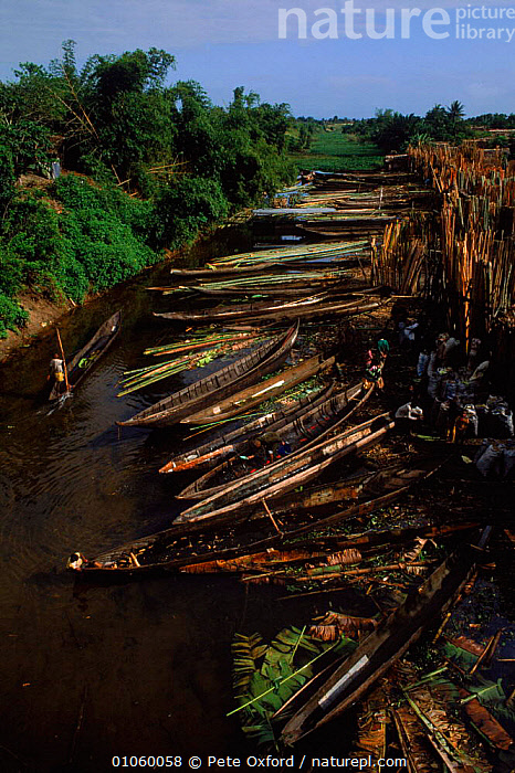 Canoes outside wood market Tamatave Madagascar, PETER,PO,CANOES,RIVERS,MARKET,TRANSPORT,TRADE,VEHICLES,BOATS,TAMATAVE,WATER,DUGOUT,LANDSCAPES,WOOD,OXFORD,MADAGASCAR,OPEN-BOATS, BOATS, BOATS, BOATS, BOATS, BOATS, Pete Oxford