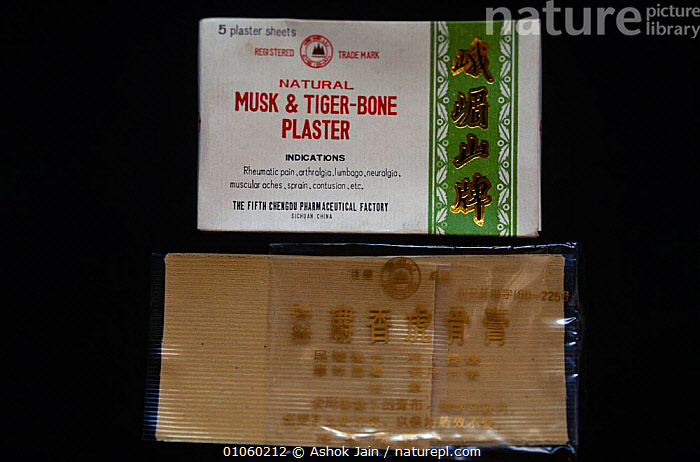 Chinese plasters made from Musk deer and Tiger bone., BIG CATS,CARNIVORES,CHINA,ENDANGERED,MAMMALS,MEDICINE,TIGERS,TRADE,TRADITIONAL,Asia, Ashok Jain