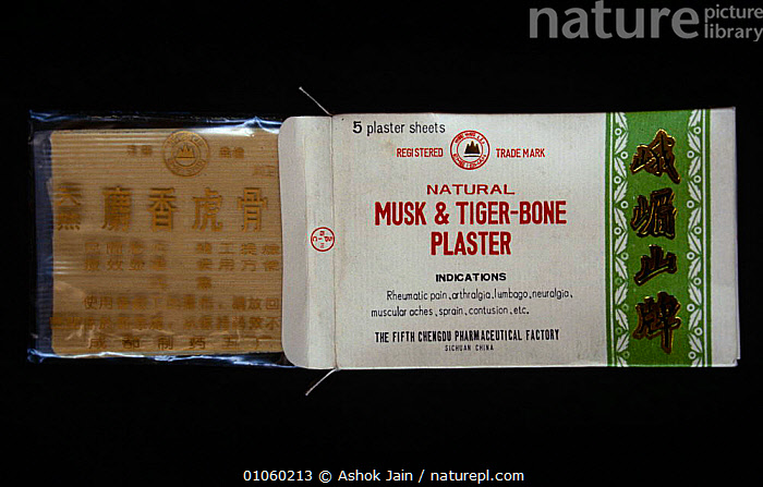 Chinese plasters made from Musk deer and Tiger bone., ASIA,BIG CATS,CARNIVORES,CHINA,ENDANGERED,MAMMALS,MEDICINE,TIGERS,TRADE, Ashok Jain