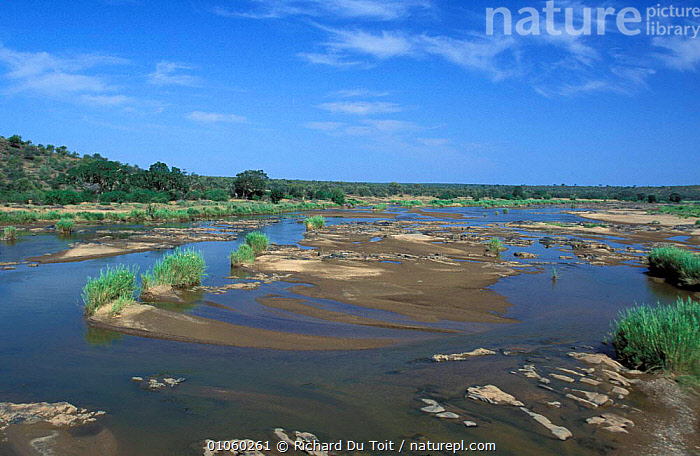 Olifants river, with sand banks and low water during summer. Kruger NP, South Africa., DRY SEASON,KRUGER NP,LANDSCAPES,RIVERS,SOUTH AFRICA,SUMMER, Richard Du Toit