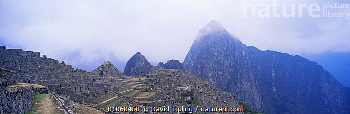 Panoramic view of Machu Picchu, Peru, South America, ANCIENT,ATTRACTION,CIVILISATIONS,CIVILIZATIONS,CLOUDS,CULTURES,HIGHLANDS,INCA,LANDMARK,LANDSCAPES,MOUNTAINS,OLD,PANORAMIC,SOUTH AMERICA,Weather,SOUTH-AMERICA, David Tipling