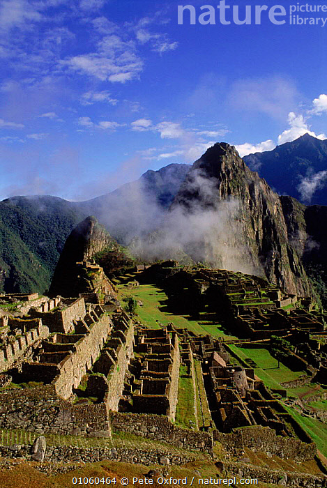 Machu Picchu Inca ruins Near Cuzco, Andes, Peru South America, CITIES,ARCHAELOGY,OXFORD,PETER,VERTICAL,CUSCO,RUINS,CUZCO,CULTURES,AMERICA,CIVILISATIONS,CIVILISATION,MACHU,PICCHU,BUILDINGS,MACHU,INCA,LANDSCAPES,ANDES,PICCHU,PO,SOUTH,SOUTH-AMERICA, Pete Oxford