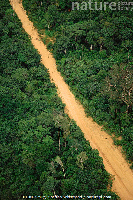Road cutting through rainforest - opens up forest to exploitation. Manaus, Brazil., DEFORESTATION,MANAUS,ROAD,ROADS,,STAFFAN,AERIAL,SOUTH AMERICA,WIDSTRAND,FORESTRY,PATTERNS,RAINFOREST,SWI,VERTICAL,CANOPY,EXPLOITATION,TROPICAL RAINFOREST,FOREST ,AERIAL ,AERIALS,SOUTH-AMERICA, Staffan Widstrand