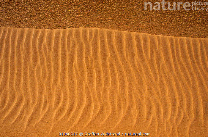 Sand formations in the Sinai desert, Egypt., ABSTRACT,ARTY SHOTS,DESERTS,EAST,LANDSCAPES,MIDDLE,PATTERNS,NORTH-AFRICA,Africa, Staffan Widstrand