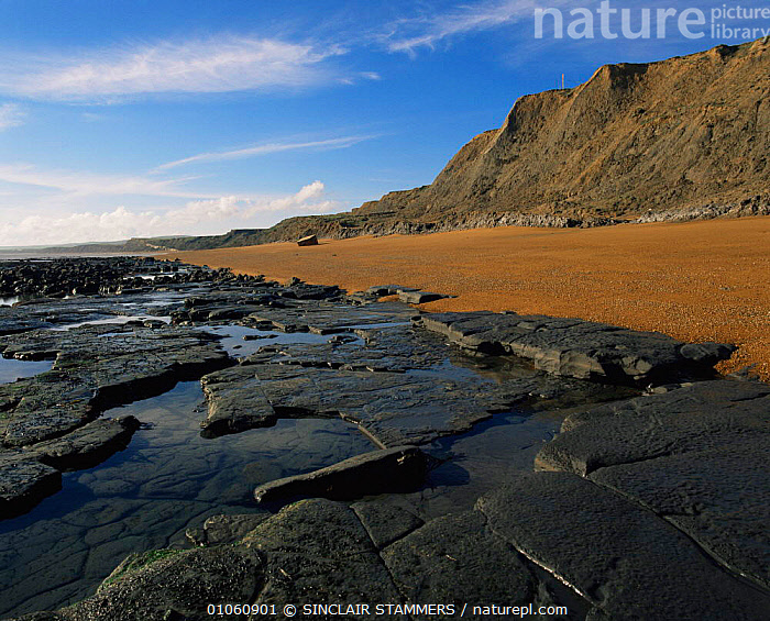 Wave cut platform in marine Atherfield clay, deposists from the Cretaceous period, Isle of Wight, UK., CLIFFS,COASTAL WATERS,COASTS,ENGLAND,EUROPE,HORIZONTAL,LANDSCAPES,MARINE,rock formations,ROCK FORMATIONS,ROCKS,SKY,UK,WAVES,United Kingdom,Geology,British, SINCLAIR STAMMERS
