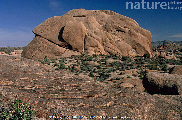 """""""Onion skin weathering"""" or weathering on granite rock, Mohave desert, California, USA, BARREN,DESERTS,EROSION,LANDSCAPES,NORTH AMERICA,PATTERNS,ROCK FORMATIONS,ROCKS,SKY,USA,WIND EROSION,Geology, SINCLAIR STAMMERS"""