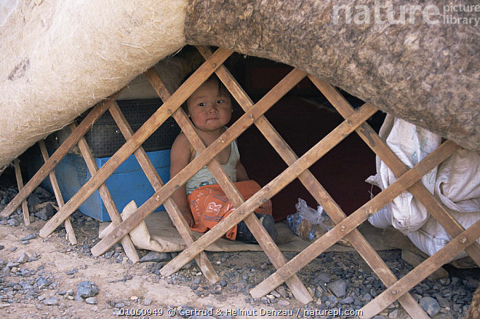 Child sitting in yurt (home), with felt-lined walls. Gobi Desert, Mongolia., ASIA,BUILDINGS,CHILD,CULTURES,DESERTS,HORIZONTAL,JUVENILE,MONGOLIA,PEOPLE,SITTING,TRADITIONAL,TRIBES, Gertrud & Helmut Denzau