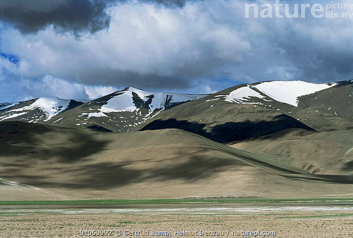 Tibetan Plateau landscape, with snow-capped mountains, Ladakh, North East India, ALPINE,ASIA,CLOUDS,HIGHLANDS,INDIAN SUBCONTINENT,LANDSCAPES,MOUNTAINS,plateau,SNOW,Weather,INDIAN-SUBCONTINENT, Gertrud & Helmut Denzau