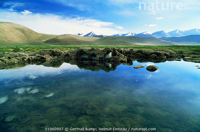Tibetan Plateau landscape with permafrost on edge of water, Ladakh, North East India, ALPINE,ASIA,GLACIAL,GLACIAL FEATURES,HIGHLANDS,INDIAN SUBCONTINENT,LANDSCAPES,meltwater,MOUNTAINS,WATER,WETLANDS,Geology,INDIAN-SUBCONTINENT, Gertrud & Helmut Denzau