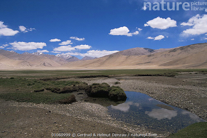 Tibetan Plateau landscape, with mountains in background. Ladakh, NE India, ASIA,CLOUDS,HORIZONTAL,INDIAN SUBCONTINENT,LANDSCAPES,MOUNTAINS,PEACEFUL,SKY,WATER,Concepts,Weather,INDIAN-SUBCONTINENT, Gertrud & Helmut Denzau