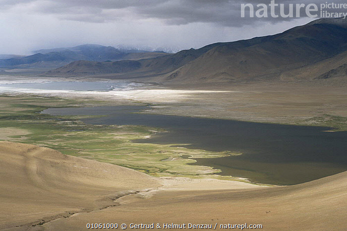 Tibetan Plateau landscape, with glacial lake in valley bottom. Ladakh, NE India, ASIA,GLACIAL,HORIZONTAL,INDIAN SUBCONTINENT,LANDSCAPES,MOUNTAINS,WATER,INDIAN-SUBCONTINENT, Gertrud & Helmut Denzau