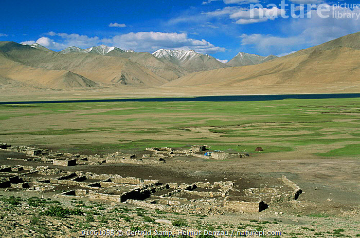 Nomadic settlement (used during winter), Ladakh, North East India, ALPINE,ASIA,BUILDINGS,GRASSLAND,herdmen,HIGHLANDS,himalayas,INDIAN SUBCONTINENT,MOUNTAINS,plateau,Seasonal,settlement,TRIBES,WINTER , LANDSCAPES,INDIAN-SUBCONTINENT, Gertrud & Helmut Denzau