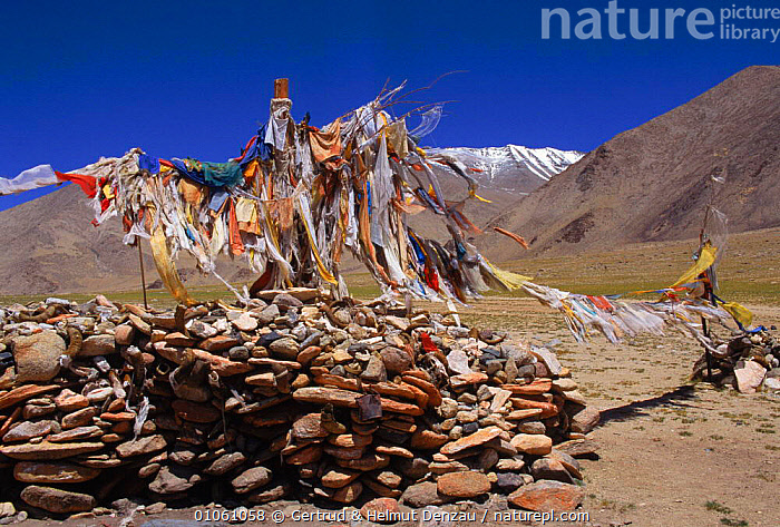 Prayer flags on poles set in rocks. Ladakh, NE India, ASIA,CULTURES,FLAGS,GDE,GERTRUD,HORIZONTAL,INDIAN SUBCONTINENT,LANDSCAPES,MOUNTAINS,NE,NEUMANN DENZAU,POLES,PRAYER,RELIGION,ROCKS,INDIAN-SUBCONTINENT, Gertrud & Helmut Denzau