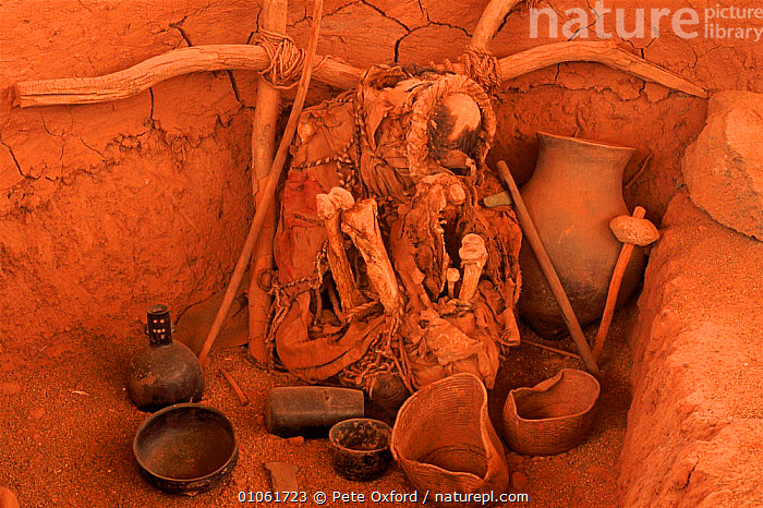 Skeleton and objects in burial site. San Pedro de Atacama, Chile  ,  ATACAMA,BURIAL,HORIZONTAL,ARCHAEOLOGY,PO,CULTURES,PEOPLE,TRADITIONAL,PEDRO,OXFORD,DEATH,ARTIFACTS,PETER,SKELETON,SOUTH-AMERICA  ,  Pete Oxford