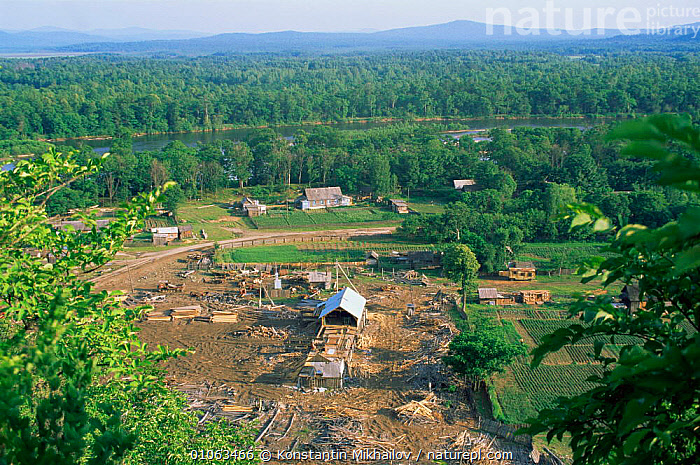 Timber yard in rural village in Siberia, Russia, ASIA,BUILDINGS,Community,FORESTRY,INDUSTRY,LANDSCAPES,RIVERS,RUSSIA,TRADE,TRADITIONAL,villages,WOODLANDS,CIS, Konstantin Mikhailov
