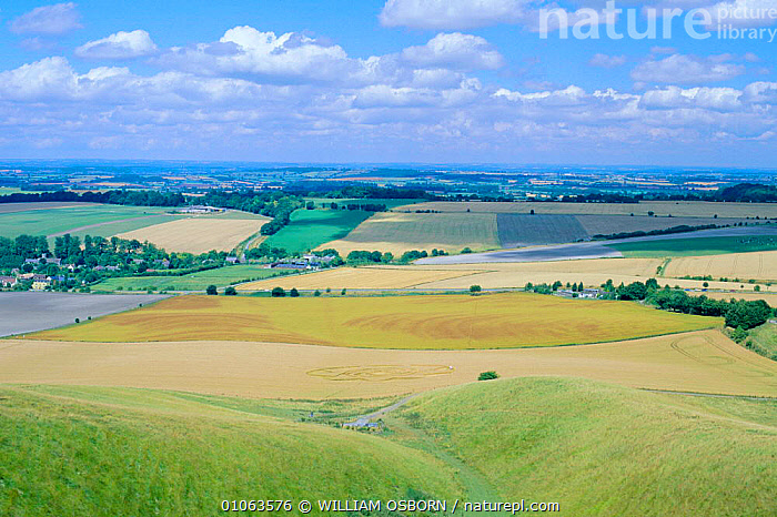 View from Cherill Down with crop circle in foreground, Wiltshire Downs, UK, FARMLAND,NORTH,TREES,AGRICULTURE,BUILDINGS,FIELDS,CLOUDS,GREEN,SKY,YELLOW,VALLEY,COUNTRYSIDE,HORIZONTAL,CIRCLES,CROPS,EUROPE,LANDSCAPES,Weather,Plants,ENGLAND, WILLIAM OSBORN