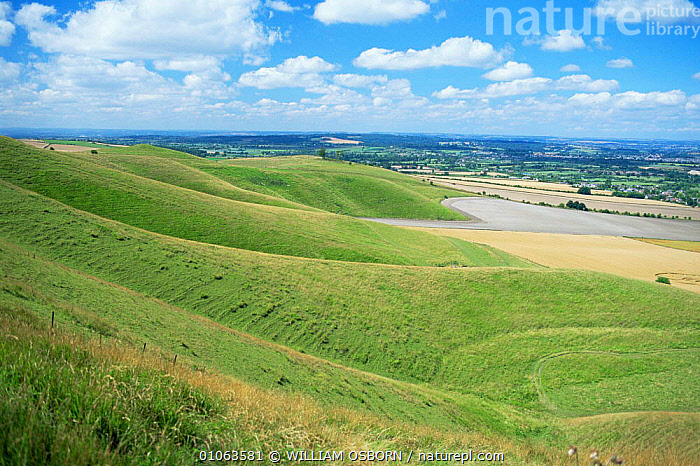 View from Cherill Down, Wiltshire Downs, UK, AGRICULTURE,ENGLAND,EUROPE,GREEN,LANDSCAPES,UK,United Kingdom,British, WILLIAM OSBORN