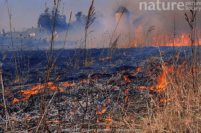 Man made fire sweeping across prairie farmland, crop land management practice, Wisconsin, USA  ,  AGRICULTURE,BUILDINGS,BURNING,EMBERS,FARMING,FARMLAND,FARMS,FIRE,FLAMES,GRASSLAND,LAND MANAGEMENT,MANMADE,MEADOWLAND,NORTH AMERICA,USA  ,  Larry Michael