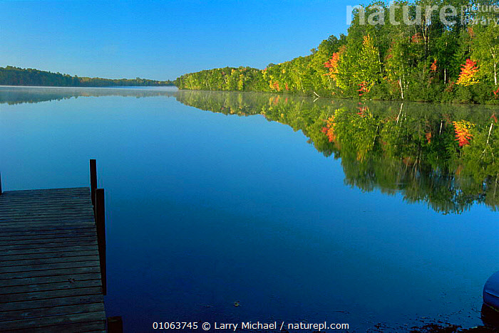 Peaceful lake with autumn colours in surrounding woodland, Wisconsin, USA, AUTUMN,Calm,LAKES,LANDSCAPES,NORTH AMERICA,PEACEFUL,REFLECTIONS,TREES,USA,WATER,Concepts,Plants, Larry Michael