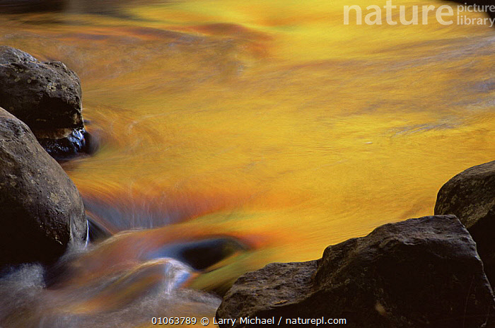Autumn colours reflected in stream, Michigan, USA, ARTY SHOTS,AUTUMN,HORIZONTAL,NATURE ABSTRACT,REFLECTIONS,RIVERS,USA,WATER,North America, Larry Michael