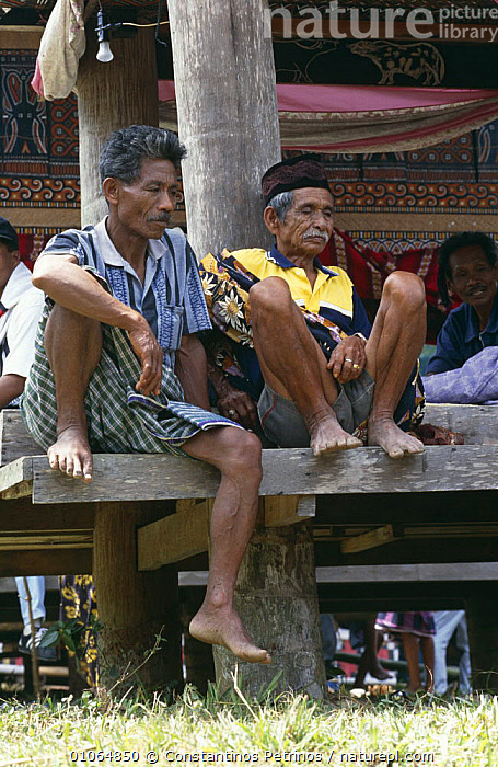 Men sitting at traditional Toraja house, Central Sulawesi, Indonesia 2000., ASIA,BUILDINGS,INDONESIA,PEOPLE,SITTING,SOCIAL BEHAVIOUR,SOUTH EAST ASIA,TRADITIONAL,VERTICAL,SOUTH-EAST-ASIA, Constantinos Petrinos