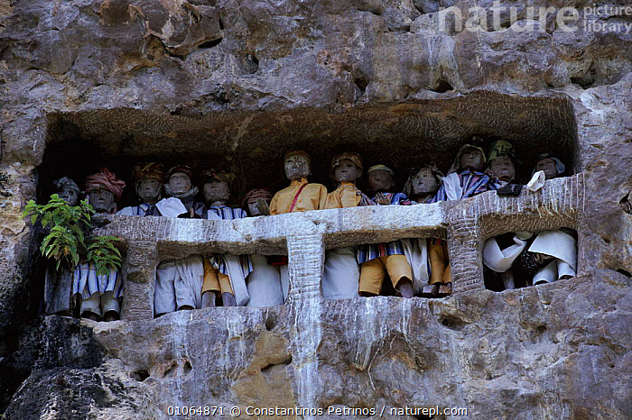 'Tau Tau' effigies, 'small person'/'person like', Tana Toraja, C Sulawesi, Indonesia NB thought to be receptable of the ghost of the deceased. They guard the cliffside graves & have often been stolen by international 'art' dealers., GUARD,HORIZONTAL,GHOST,ARTIFACTS,TORAJA,CENTRAL,CPE,PETRINOS,SOUTH EAST ASIA,TANA,CONSTANTINO,INTERESTING,TAU,ART,TRADITIONAL,CLIFFSIDE,TRIBES,DEATH,EFFIGIES,CULTURES,GRAVES,DECEASED,FIGURES,ASIA,SOUTH-EAST-ASIA,INDONESIA, Constantinos Petrinos