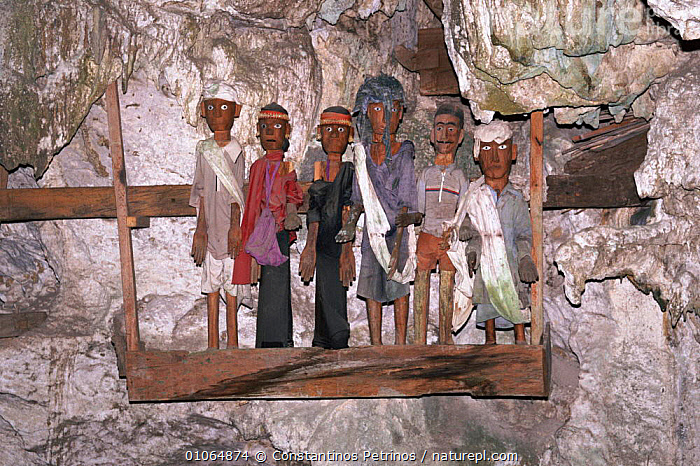 'Tau Tau' effigies, 'small person'/'person like', Tana Toraja, C Sulawesi, Indonesia NB thought to be receptable of the ghost of the deceased. They guard the cliffside graves & have often been stolen by international 'art' dealers.  ,  GHOST,TRIBES,CENTRAL,TAU,CLIFFSIDE,ARTIFACTS,TORAJA,CONSTANTINO,HORIZONTAL,CPE,CULTURES,MODELS,GRAVES,TRADITIONAL,EFFIGIES,PETRINOS,DECEASED,FIGURES,INTERESTING,TANA,DEATH,GUARD,SOUTH EAST ASIA,ART,ASIA,SOUTH-EAST-ASIA,INDONESIA  ,  Constantinos Petrinos