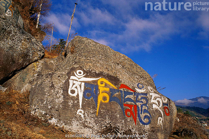 'Domani' rock prayers outside Kurjey monastery, Bumthang, Central Bhutan 2001, ASIA,COLOURFUL,himalayas,INDIAN SUBCONTINENT,MOUNTAINS,ROCKS,script,TRADITIONAL,INDIAN-SUBCONTINENT, Pete Oxford