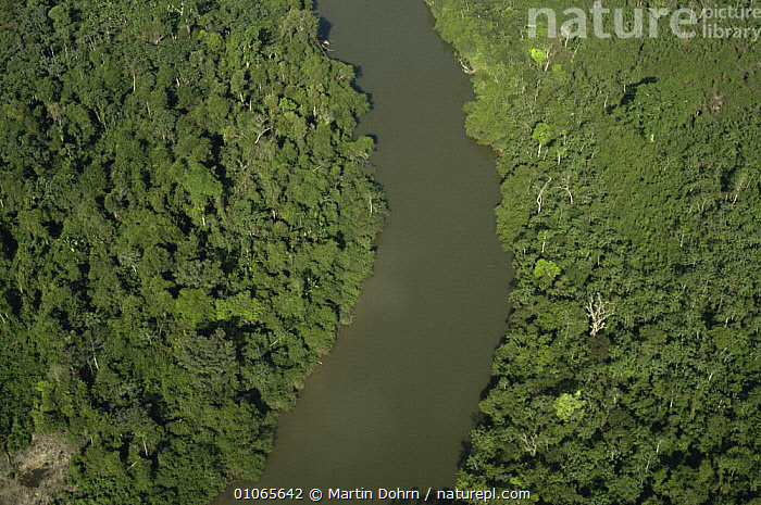 Aerial view of river Iriri, Xingu river system and surrounding tropical rainforest, Amazon Basin, AERIALS,CANOPY,HABITAT,LANDSCAPES,RIVERS,SOUTH AMERICA,TROPICAL,TROPICAL RAINFOREST,SOUTH-AMERICA, Martin Dohrn