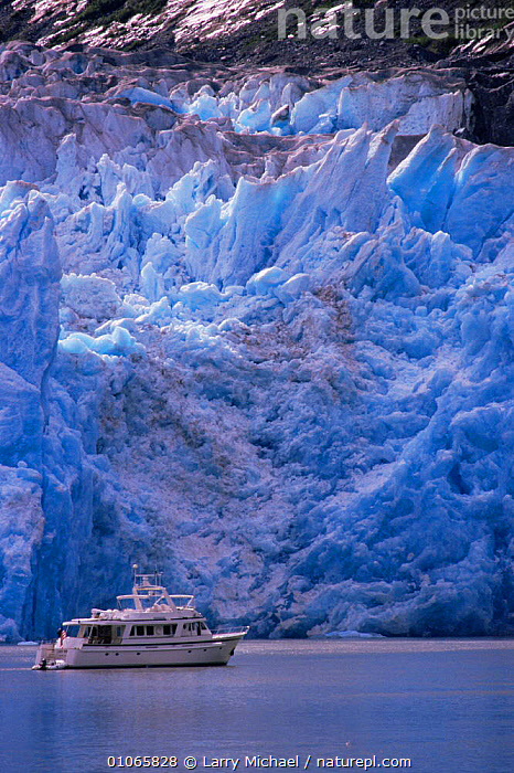 Tourist boat passing beneath face of Sawyer Glacier, Tracey Arm, South East Alaska, USA, BLUE,BOATS,COASTAL WATERS,COASTS,FROZEN,GLACIAL,GLACIAL FEATURES,GLACIERS,ICE,LANDSCAPES,MARINE,NORTH AMERICA,SEA,TOURISM,USA,VERTICAL,WATER,Geology, Larry Michael