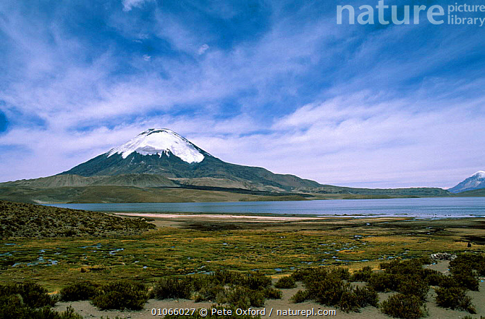 Lake Chungara, highest lake in the world at 4,500m and snow-capped Parinacota volcano, altiplano, Lauca National Park, Chile., CLOUDS,HORIZONTAL,LANDSCAPES,RESERVE,SNOW,SOUTH AMERICA,VOLCANOES,Weather,Geology,SOUTH-AMERICA, Pete Oxford