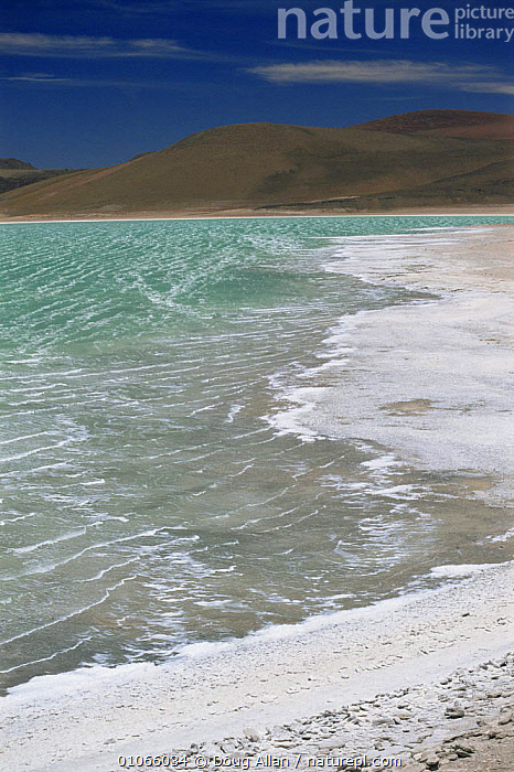 The green waters of Laguna Verde with extinct Inca volcano Licancabur behind, Andes, Bolivia, ALTIPLANO,ALTITUDE,DORMANT,HIGHLANDS,LAKES,LANDSCAPES,MOUNTAINS,SALT,SOUTH AMERICA,VERTICAL,VOLCANOES,WATER,Geology,SOUTH-AMERICA, Doug Allan