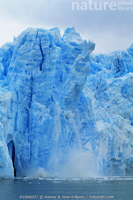 San Rafael Glacier calving, Chilean Fjords, Chile, South America  ,  ACTION,ADVANCING,BLUE,CLIMATE CHANGE,COASTAL WATERS,COASTS,COLD,CRACKING,DANGEROUS,GLACIAL FEATURES,GLACIERS,GLOBAL WARMING,ICE,MARINE,MELTING,SOUTH AMERICA,VERTICAL,WATER,Geology,SOUTH-AMERICA  ,  Hanne & Jens Eriksen