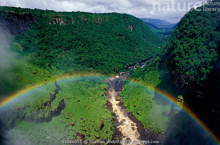 Kaieteur Falls gorge landscape with rainbow, Guyana, South America, BEAUTIFUL,LANDSCAPES,PEACEFUL,RAINBOWS,RAINFOREST,RIVERS,TROPICAL RAINFOREST,WATER,WATERFALLS,Concepts,Weather,SOUTH-AMERICA, Staffan Widstrand