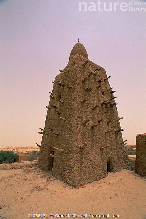 The old mosque, Timbuktu, Mali, West Africa, AFRICA,BUILDINGS,MOSQUES,MUD,NORTH AFRICA,OLD,TEMPLES,TRADITIONAL,VERTICAL,WEST AFRICA,NORTH-AFRICA, Grant McDowell