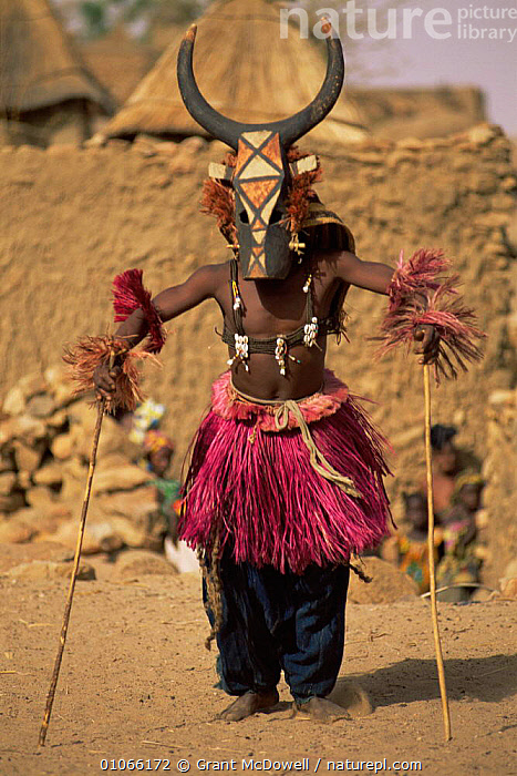 Dogon masked dancer, Mali, West Africa, AFRICA,CLOTHING,CULTURES,DANCING,FESTIVALS,NORTH AFRICA,PEOPLE,PORTRAITS,TRADITIONAL,TRIBAL,TRIBES,VERTICAL,WEST AFRICA,NORTH-AFRICA, Grant McDowell