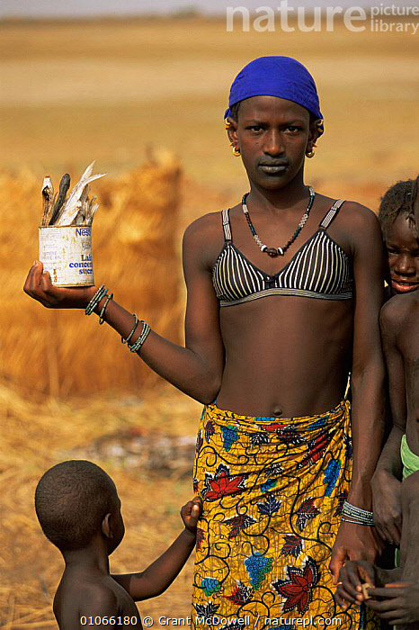 Fulani woman with caught fish in tin, Mali, West Africa, AFRICA,CHILD,CHILDREN,FEMALES,FISH,HUNTING FOOD,NORTH AFRICA,PEOPLE,PORTRAITS,TRADITIONAL,TRIBES,VERTICAL,WEST AFRICA,WOMAN,NORTH-AFRICA, Grant McDowell