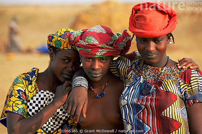 Fulani women portrait, Mali, West Africa, AFRICA,CLOTHING,CULTURES,FEMALES,NORTH AFRICA,PEOPLE,PORTRAITS,THREE,TRADITIONAL,TRIBES,WEST AFRICA,WOMEN,NORTH-AFRICA, Grant McDowell