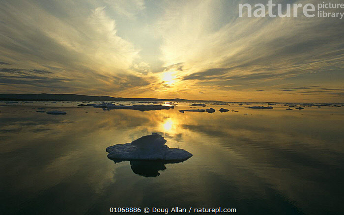 Midnight sun over Spring pack ice, Lancaster Sound, Canadian Arctic, Canada  ,  ARCTIC,CANADA,CLOUDS,COASTAL WATERS,COASTS,DUSK,EVENING,ICE,ICEBERGS,ICEFLOES,LANDSCAPES,NORTH AMERICA,PEACEFUL,POLAR,SPRING,SUN,WATER,Concepts,Weather  ,  Doug Allan