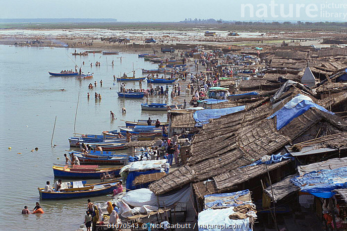 Boats and slum huts on the shores of River Ganges, Garnmuktesar, Uttar Pradesh, India  ,  ASIA,BOATS,BUILDINGS,HOMES,INDIAN SUBCONTINENT,LANDSCAPES,OVERPOPULATION,PEOPLE,POLLUTION,RIVERS,INDIAN-SUBCONTINENT,INDIA  ,  Nick Garbutt