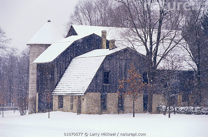 Large farm buildings in snow in winter, Wisconsin, USA  ,  barns,BUILDINGS,FARMLAND,HOMES,houses,NORTH AMERICA,SNOW,USA,WINTER  ,  Larry Michael