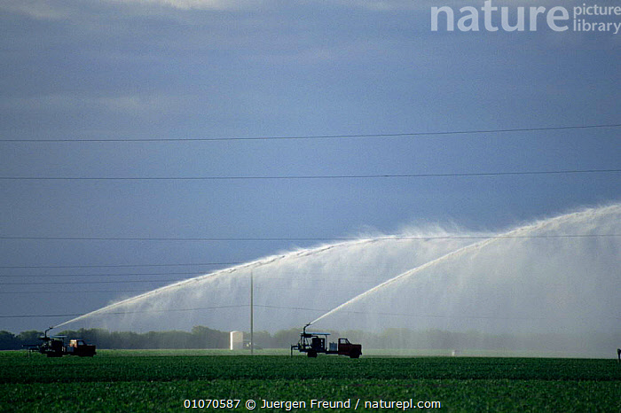 Irrigating crops from pump trucks, Florida, USA  ,  AGRICULTURE,CONSERVATION,CROPS,FARMLAND,Irrigation,NORTH AMERICA,pumping,spraying,USA,VEHICLES,WATER  ,  Jurgen Freund